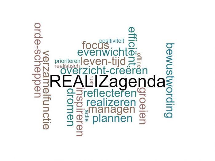REALIZ agenda